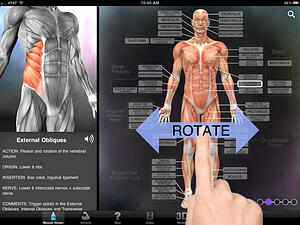 example of ipad screen referencing detailed medical information