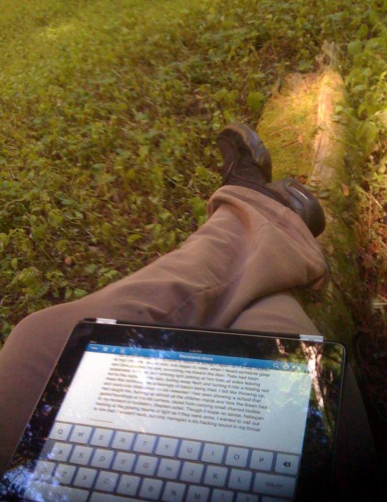 iPads in the classroom, school wireless network design, wifi companies,