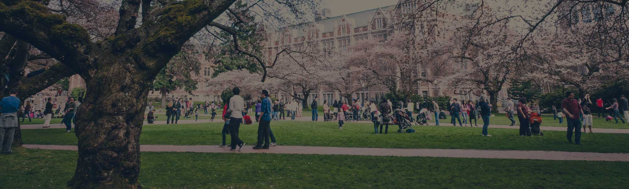 5 Campus Wi-Fi Trends Every College CIO Needs to Follow